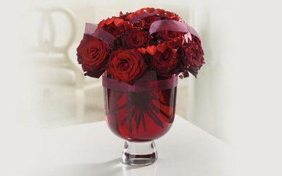 Applewood Florist Mississauga